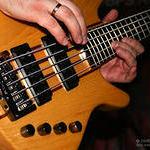 Бас гитара для новичков