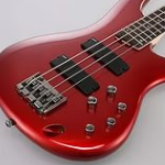 Электрическая бас-гитара, разновидности, особенности моделей